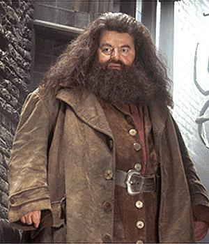 Hagrids mazā burvja Harija... Autors: Fosilija 10 slaveni milži!!