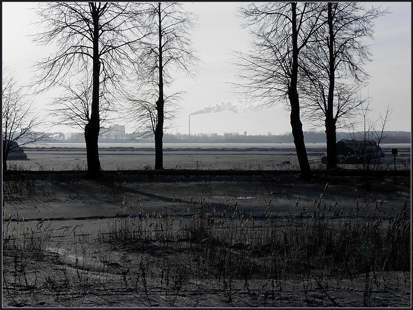 Autors: stokijs Melnais sniegs
