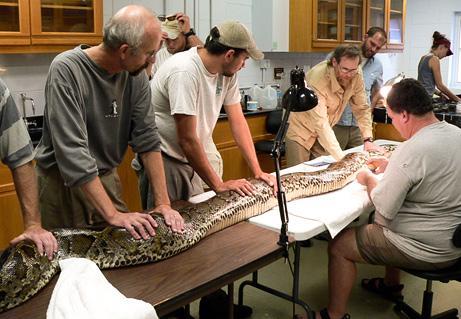 8 quotcitplanētiešuquot čūskas... Autors: chesterfields top 10 atklājumi 2009. gadā