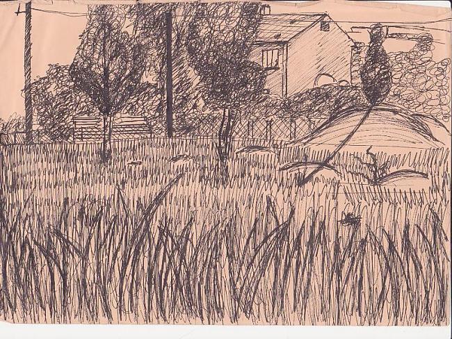 Kaut kur pie mājas pļavā Autors: Karmena Izlaide