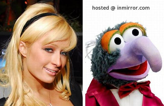 Paris Hilton vs Great Gonzo Autors: FANS007 Paskat, Cik Līdzīgi! :D