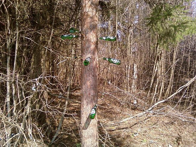 Šeit vēl tapšanas stadijā Autors: unbannaby Alus, īstā kompānija, koks = aluskoks.