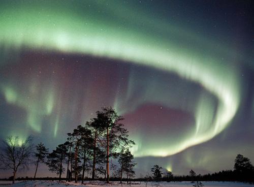 11 Redzēt ziemļblāzmu  18034... Autors: Fosilija Cilvēku populārākās vēlmes/mērķi