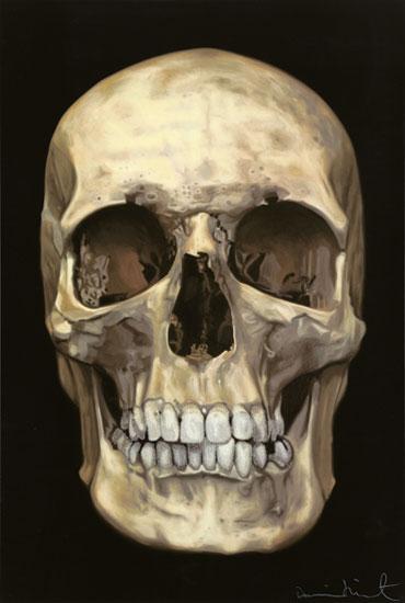 Cilvēka galvas kauss sastāv no... Autors: Fosilija Fakti par tevi! 2