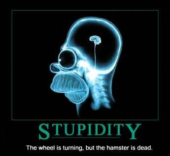 Stulbums nav nekāds noziegums... Autors: kaimiņš Pasmejies