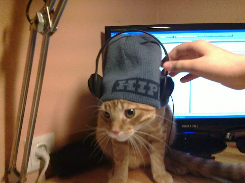 īsts Hip Hop pazinējs Autors: Melvins Kaķītis :)
