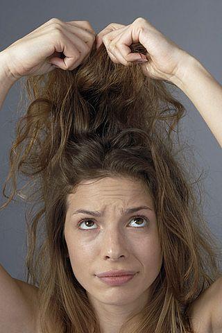 Klimats  ziemā aukstumā galvas... Autors: Forsija Fakti par matiem 2