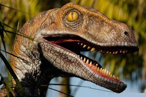 Dinozauri izmira vēl pirms... Autors: CheetaH 15 interesanti fakti par dažādām tēmām