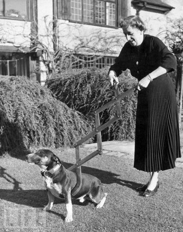 """1940 Ierīce suņu savaldīšanai... Autors: Lavruhins Reiz tas bija """"ūnikums""""...3"""