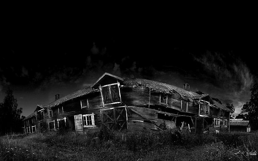 Autors: darwins Melnās tapetes