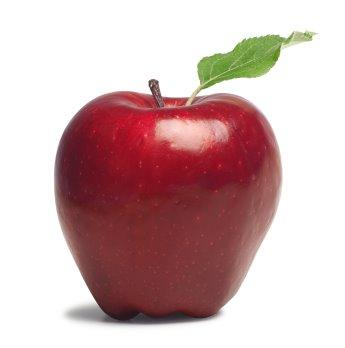 Ābola dzimtene ir... Autors: robotxq9 18 fakti par āboliem!