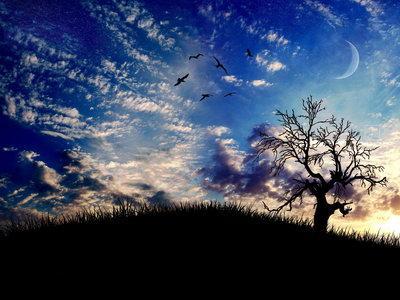Autors: Nastjux Beautiful Sky ♥