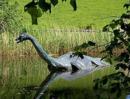 Iespējams ka ekspedīcijas kura... Autors: SvaigsGaiss Zivs - monstrs!