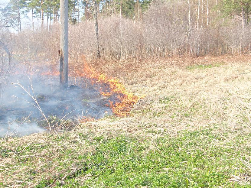 parlaimi tabam uguns pagāja... Autors: telly Kūla deg!