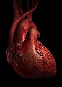 Stipras kontrakcijas var... Autors: FastsKTFF 9 Traki fakti par cilvēka ķermeni