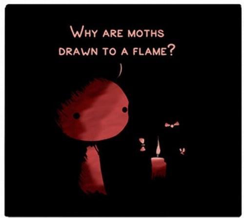 Autors: latvis20 Kāpēc uguns pievilina lidoņus?