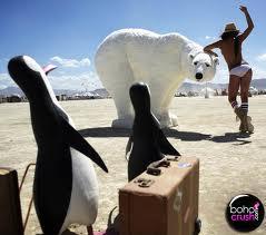 Autors: Rockhopper Shopping pingvīns