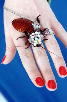 Autors: snikki Diamonds are girl's best friends..
