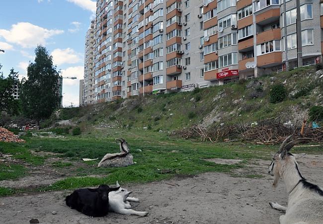 Godīgi sakot bedre tā ir ne... Autors: ainiss13 Ukrainas galvaspilsēta???