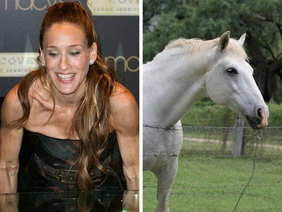 Sarah Jessica Parker  Horse Autors: Fosilija Slavenību dvīņi!