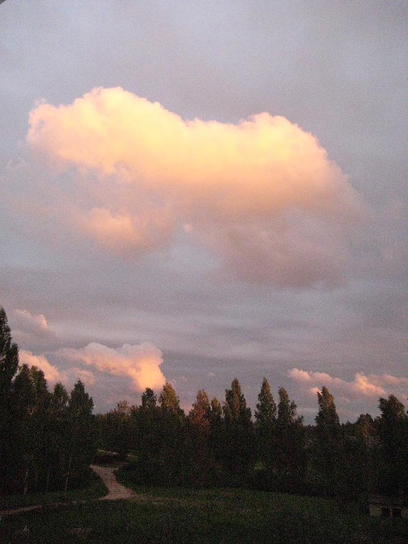 Šī bilde man atgādina kādu... Autors: dafs132 Dabasskats no mana balkona