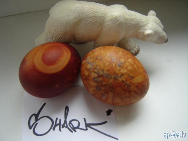 Un tad Mans polārlāča draugs... Autors: SharK SharK`a Lieldienu ola.2.