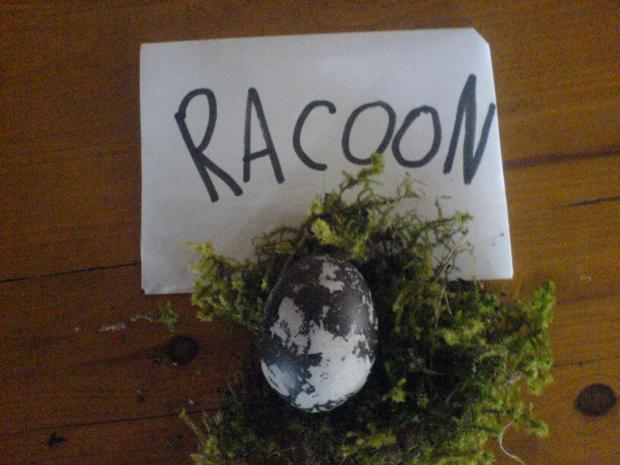 Autors: racoon Atkal es :D
