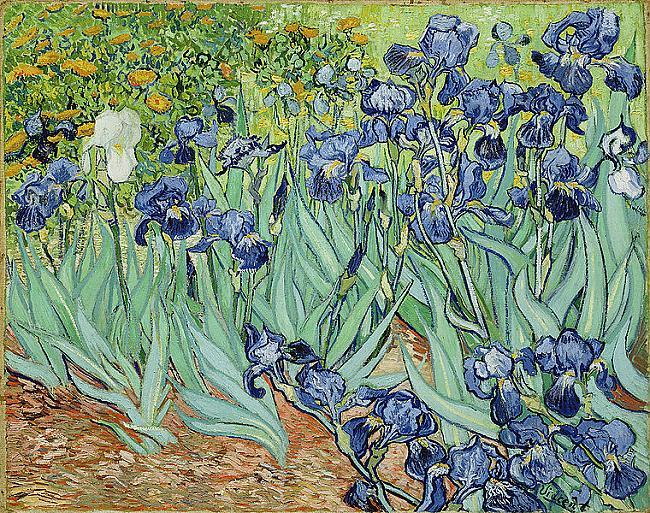 Nr 10 Irises Autors Vincent... Autors: Pūpols Top 10 dārgākās gleznas