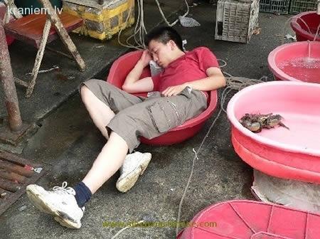 Autors: Fosilija Kā tik cilvēki aizmieg!