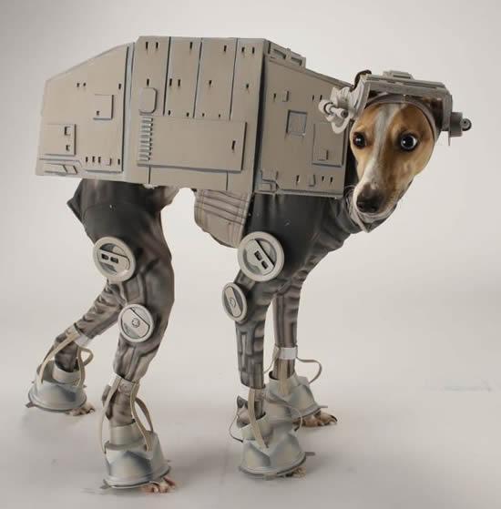 Suns kostīmā Autors: DP Arodeyz Helovīnu suns.