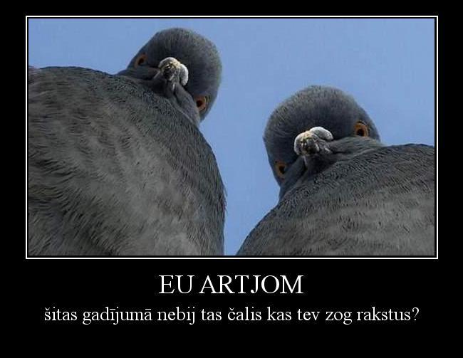 Autors: Luusis9 Eu artjom