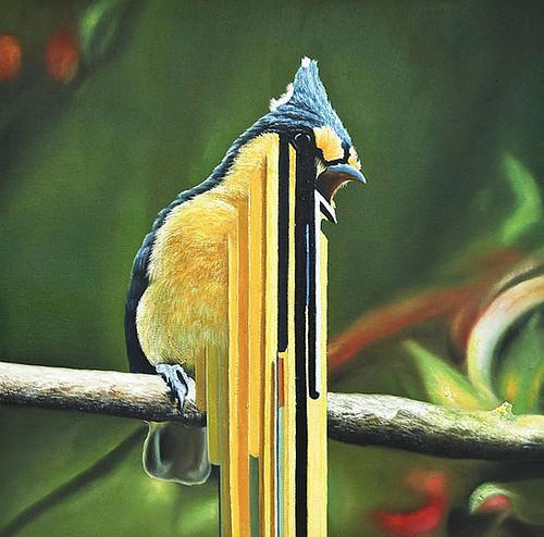 Autors: Karinozaurs birds