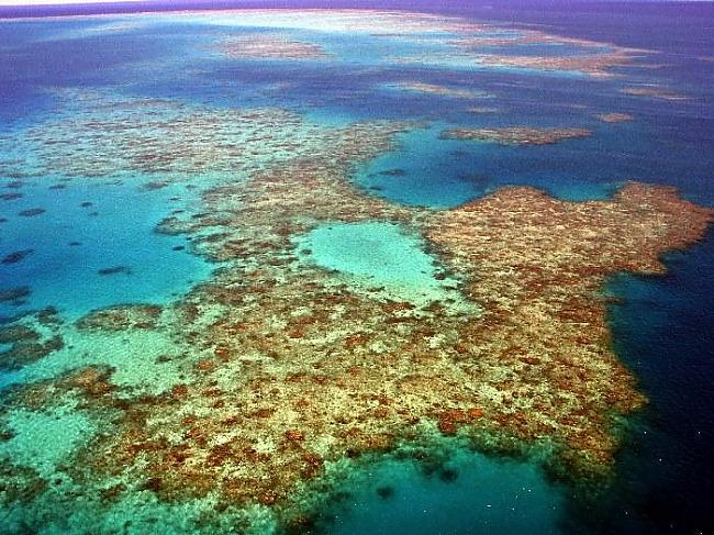 1993 gads Klusā okeāna... Autors: HollywoodHill Neatminētās mīklas