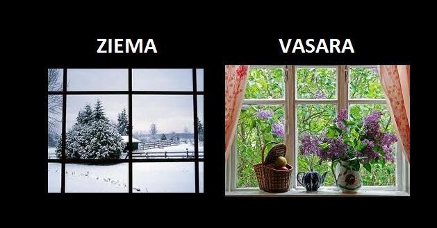 Autors: The Diāna Ziema vs vasara