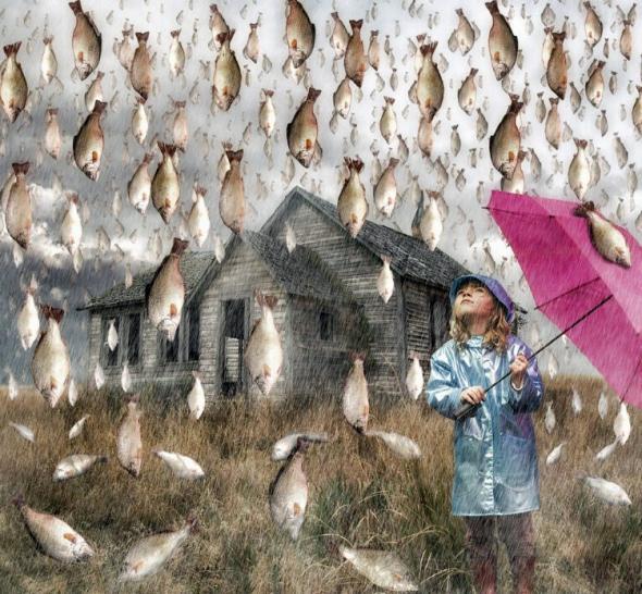 200 gads  Varžu un zivju... Autors: Fosilija Kad nesaproti kas krīt no gaisa