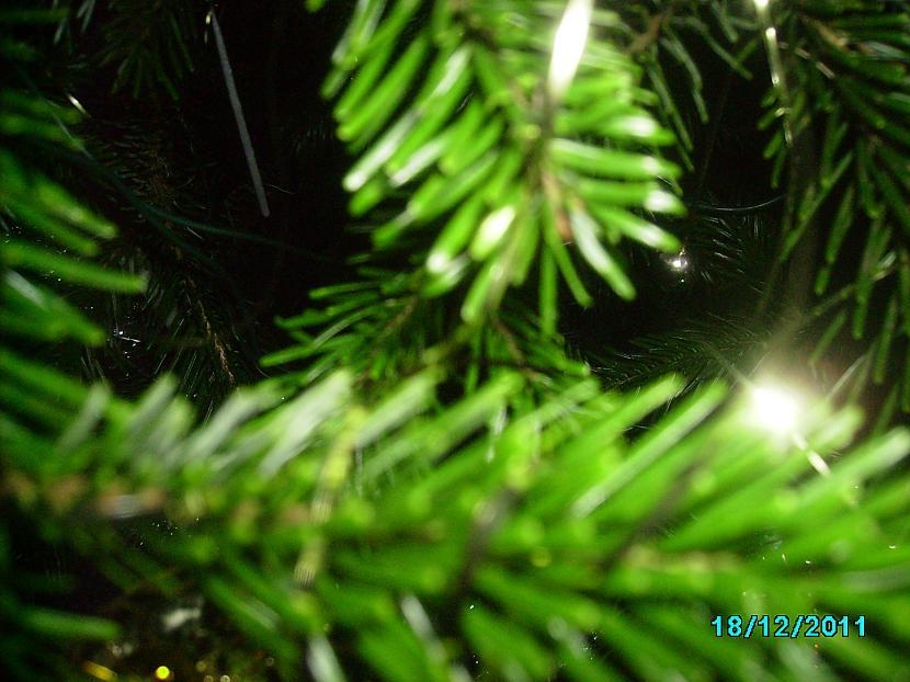 Ir Ziemas svētku rītsTas viss... Autors: ŠmukāSenča Neesmu dzejnieks, teikšu dzejā. :)