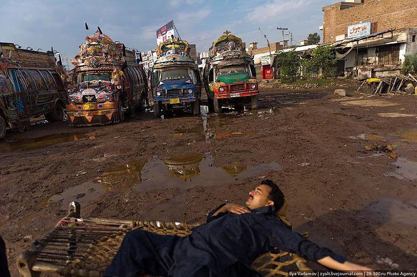 kāds guļ     Autors: Administrācija Pakistānas autobusu parks