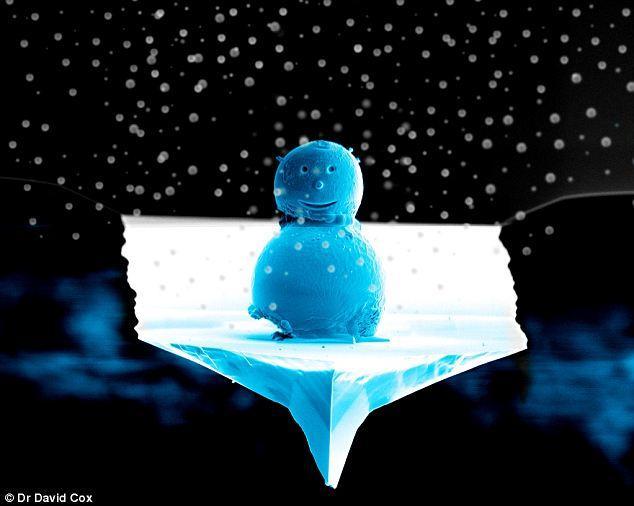 īstā bildeAngļu fiziķis... Autors: ZveeRiņš fakti par sniegavīriem.