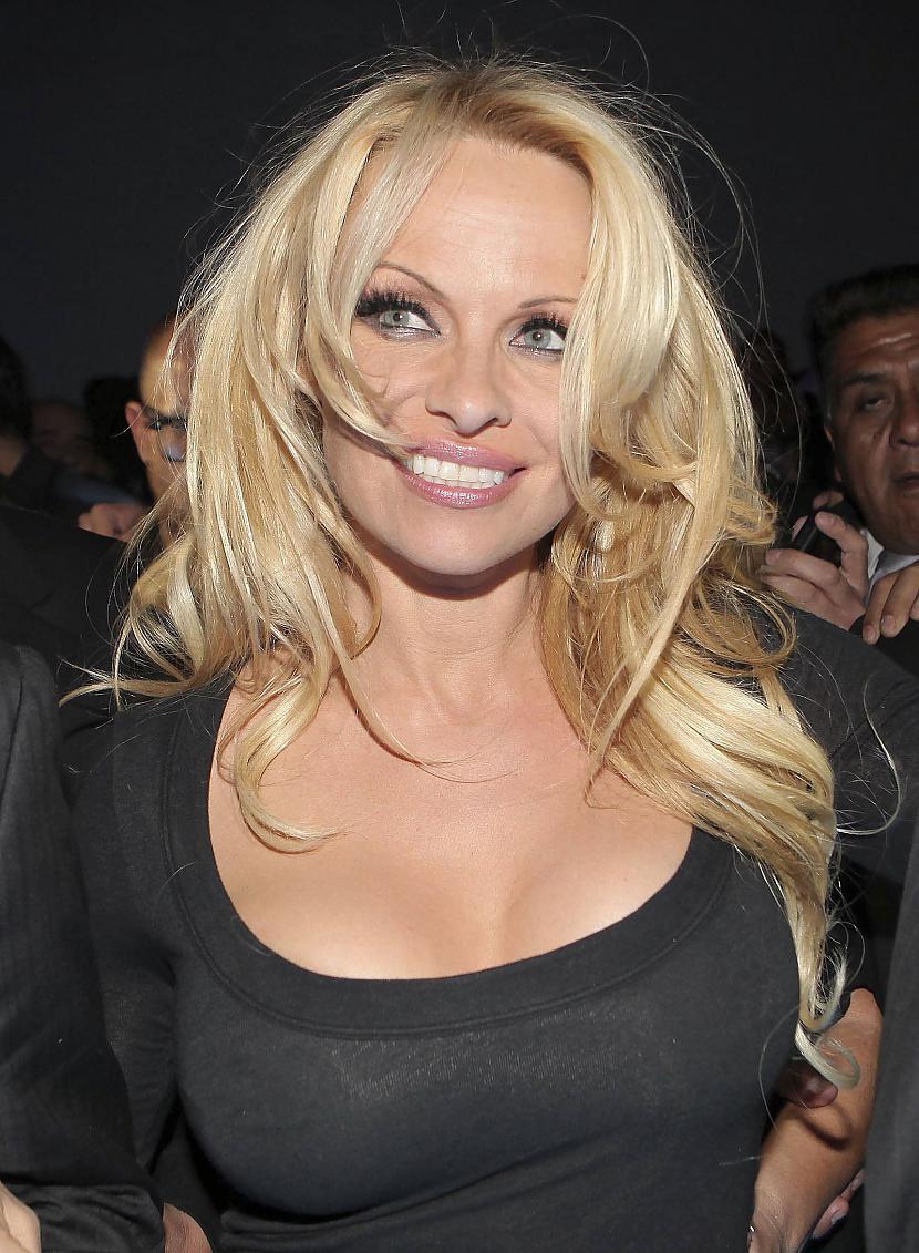 Autors: R1DZ1N1EKS Pamela Andersone par daudz dzer?