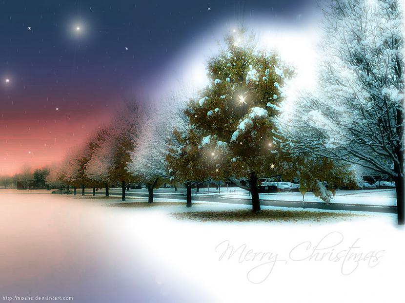 Autors: Fosilija Ziemassvētki