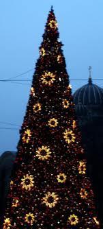 Lielākā daļa Ziemassvētku... Autors: Monster energy Fakti par ziemassvetku eglītēm