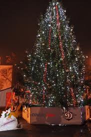 Mazas svecītes Ziemassvētku... Autors: Monster energy Fakti par ziemassvetku eglītēm