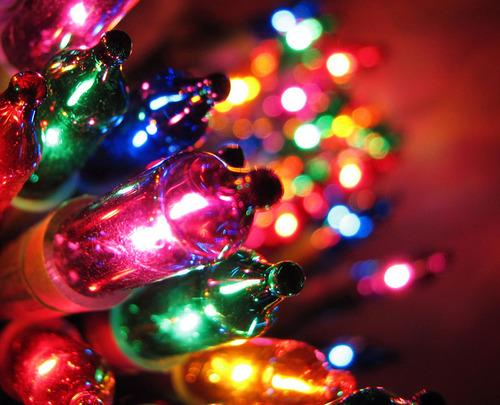 Autors: Fosilija Ziemassvētki.