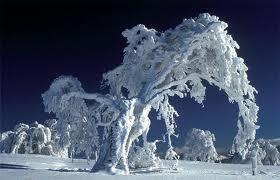 Ginesa Rekordu grāmata stāsta... Autors: robiiic Interesanti fakti par sniegu! :)