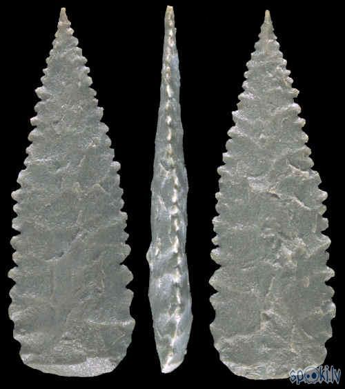 Šis ir sens šķēpa uzgalis Autors: Fosilija Ieroču vēsture