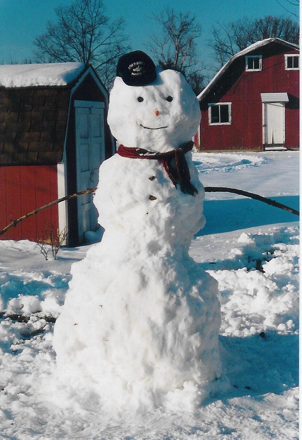 bet kad sniegavīri uzvelti un... Autors: iloveapplecake Winter snow story!`
