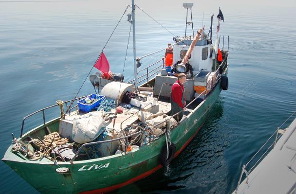 Zvejnieki 711miruši uz 100 000... Autors: darons 2009 gada statistika SKUMJI... (vispasaules vidējā)