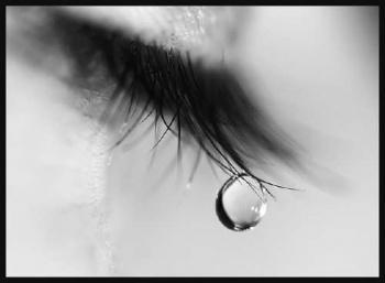 Autors: Tarakāns100 Mēness asaru pērle.19. nodaļa.
