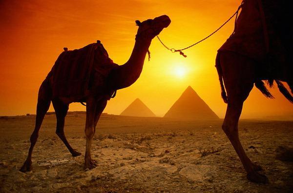 Ēģipte dēvēta gan par... Autors: Fosilija Īsumā par Ēģipti...