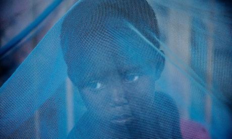 Malārijas odi inficē 250... Autors: NeLdiNja Odi.